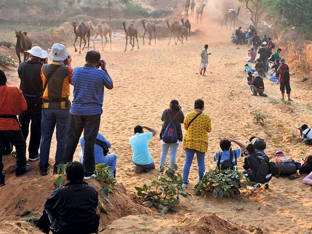 Photographers-surround-the-path-where-camel-herds-pass-at-the-Pushkar-Fair
