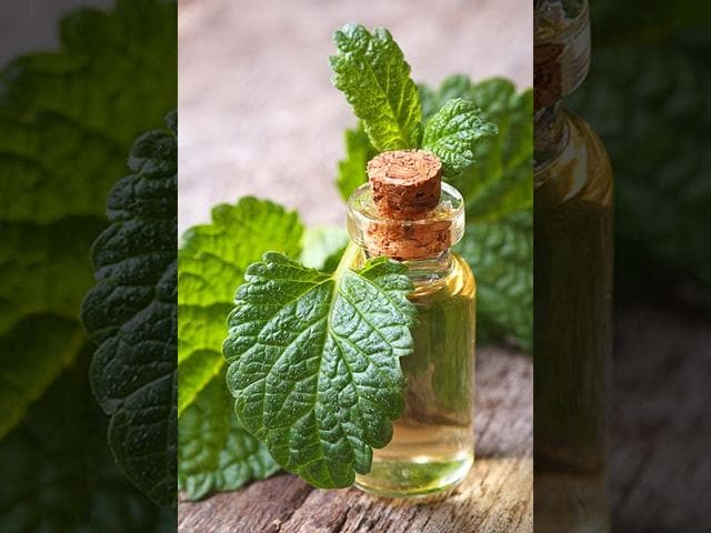 The-mouthwash-also-combats-ulcers-and-infections-Photo-Shutterstock