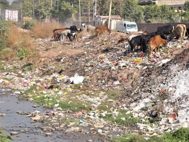 A-plot-in-Industrial-Area-s-Phase-2-turned-into-a-dumping-yard-Sant-Arora-HT