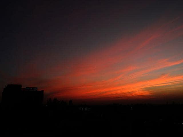 Chandigarh,Gulmohar,Sunset