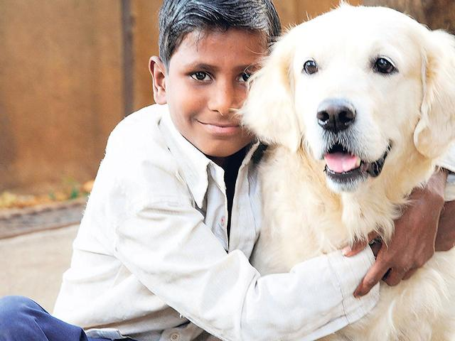 Angel-a-pet-dog-was-used-as-Mumbai-s-only-animal-assisted-therapy-programme-HT-photo