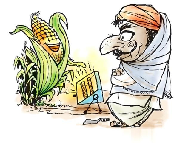 Madhya Pradesh government