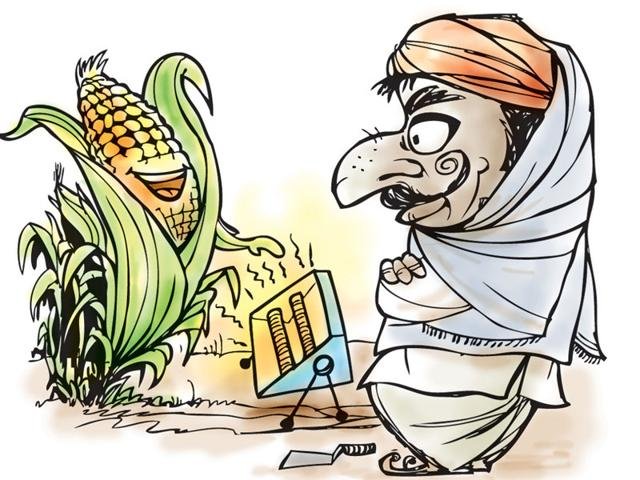 Madhya Pradesh,Bhopal,agriculture
