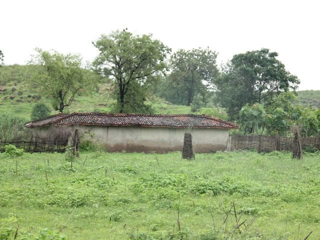 The-entire-area-from-the-Delhi-border-till-Sariska-must-be-declared-a-reserved-forest-feel-experts