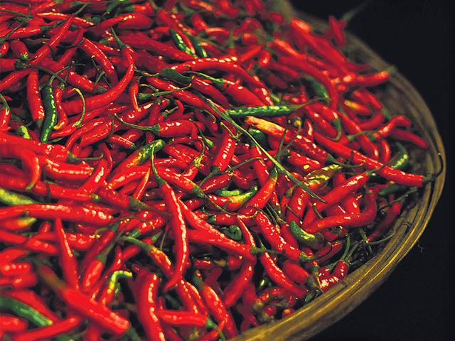 For-those-looking-to-buy-the-hottest-freshest-chillies-this-season-the-age-old-Mirchi-Galli-in-Mumbai-still-manages-to-pack-a-punch