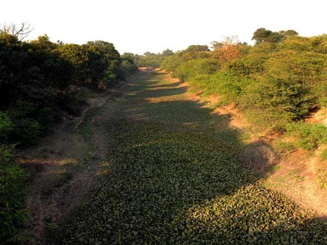 View-of-SYL-canal-at-village-Kaami-Kala-near-Shambhu-Bharat-Bhushan-HT