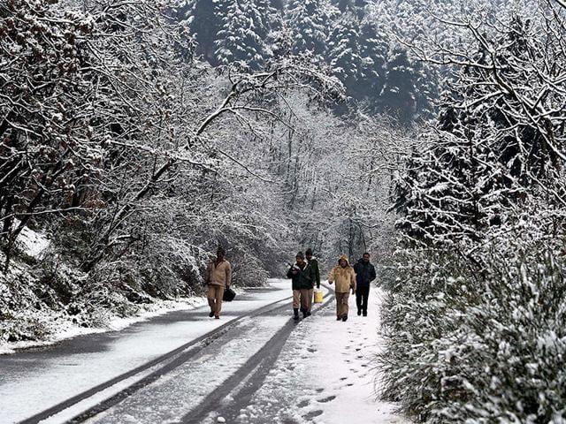Jammu,Kashmir,national highway
