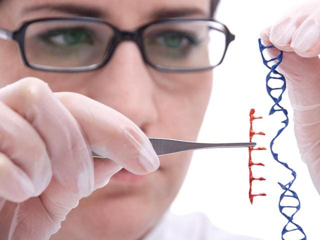 By-identifying-a-key-gene-for-each-trait-and-how-it-is-affected-epigenetically-it-is-potentially-possible-to-influence-the-degree-of-its-expression-Photo-Shutterstock