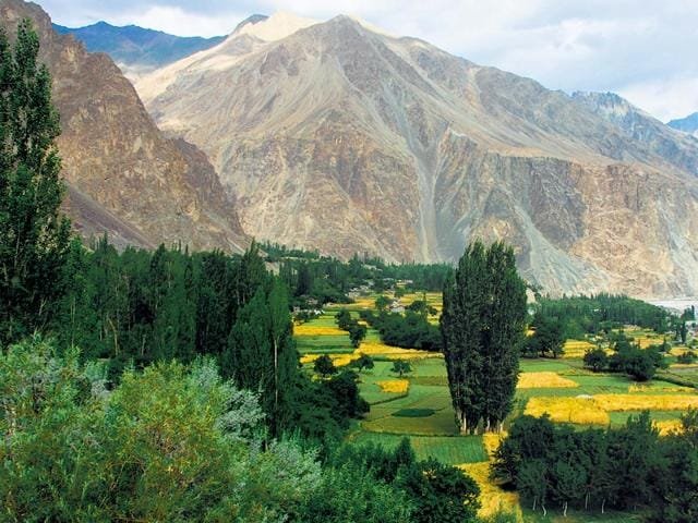 Turtuk-is-a-Baltistani-village-located-around-10-km-from-the-India-Pakistan-border-and-is-a-home-to-around-500-Balti-families-Turtuk-along-with-four-other-villages-came-under-Indian-administration-during-the-1971-war-Photo-Furquan-Ameen-Siddiqui-HT