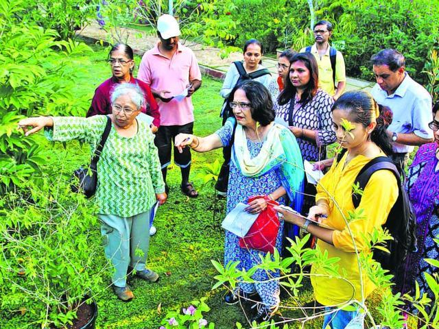 Usha-Desai-in-green-at-the-walk-at-Dattaji-Salvi-Udyan-in-Thane-Praful-Gangurde-HT-photo