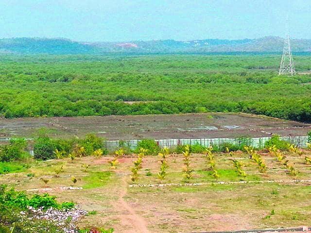Mangrove cover,Sindhudurg,Maharashtra Remote Sensing Application Centre