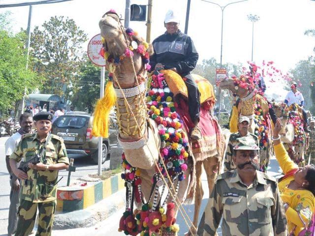 Amritsar,camel safari,international border with Pakistan