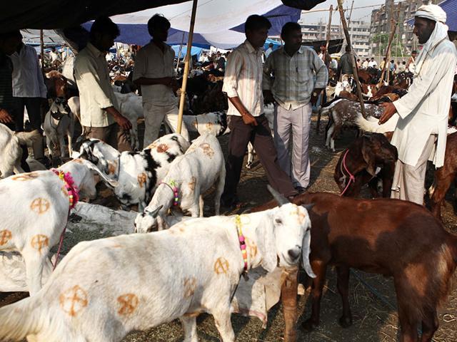 Maharashtra beef ban