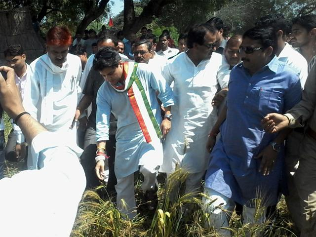 Congress-MP-Jyotiraditya-Scindia-takes-a-look-at-crops-destroyed-by-hailstorm-HT-file-photo
