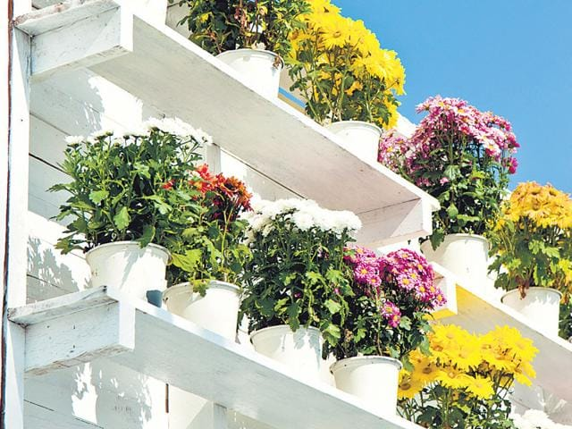Fancy A Lovely Garden In Your Apartment We Ve Got Some Smart Ideas India Hindustan Times