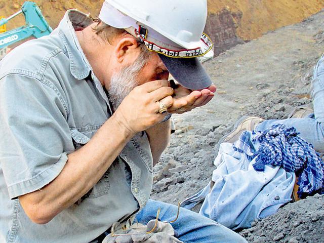 first mammals,fossils,coal mine at Surat