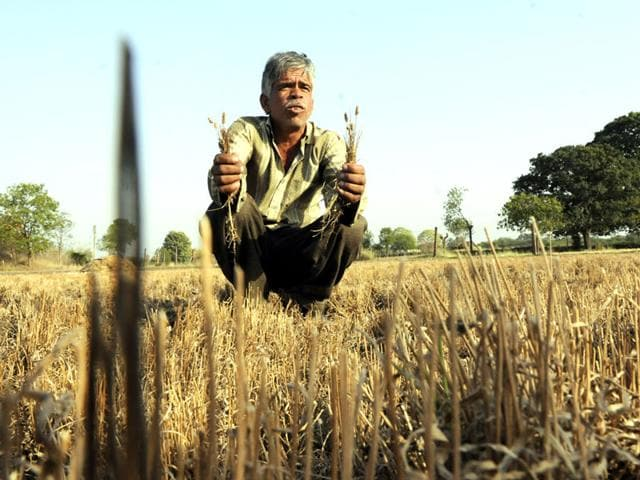 Over-the-last-one-month-more-than-half-a-dozen-farmers-ended-their-lives-in-western-parts-of-Madhya-Pradesh-HT-file-photo