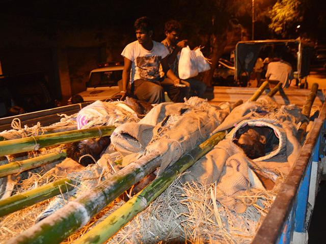 Bodies-of-men-killed-in-the-encounter-being-bought-to-a-government-hospital-near-Tirupathy-on-Tuesday-HT-Photo