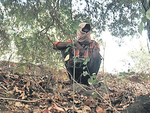 Perumal-name-changed-lost-his-brother-in-the-Andhra-encounter-He-narrated-his-experience-from-a-logging-trip-HT-Photo