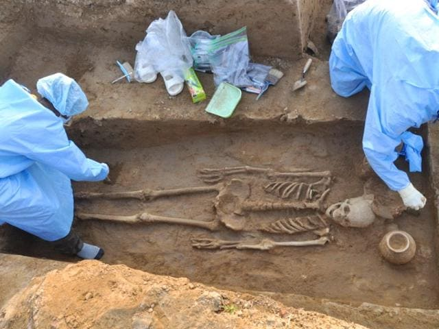 archaeologists,Human Skeletons,Rakhigarhi