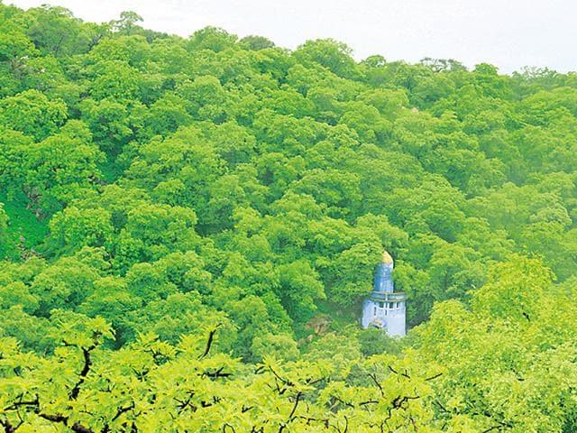 The-Mangar-Bani-belt-falls-under-the-Aravallis-in-Haryana-HT-File
