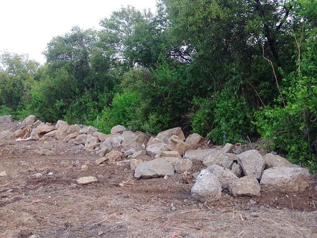 Residents-of-Dahisar-East-have-complained-of-mangrove-destruction-of-in-their-area-Photo-New-Link-Road-Residents-Forum