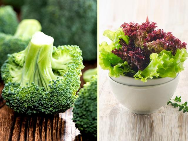 Broccoli-has-89-water-content-whereas-lettuce-has-95-water-in-it-Photo-Shutterstock