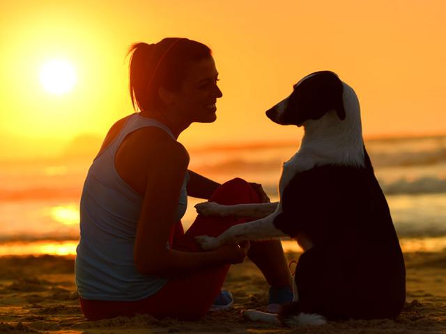 Dogs-There-s-a-reason-we-call-them-man-s-best-friend-We-can-learn-so-many-things-from-a-dog-s-behavior-and-personality-Shutterstock
