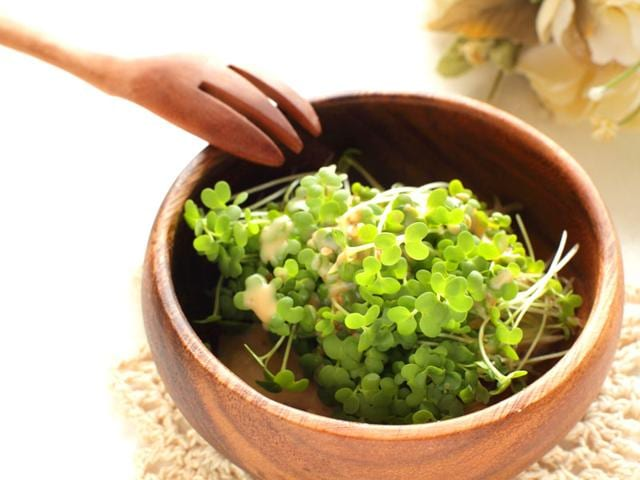Broccoli-sprouts-have-been-identified-as-containing-an-ingredient-that-could-help-protect-against-head-and-neck-cancer-in-recent-research-Photo-Shutterstock