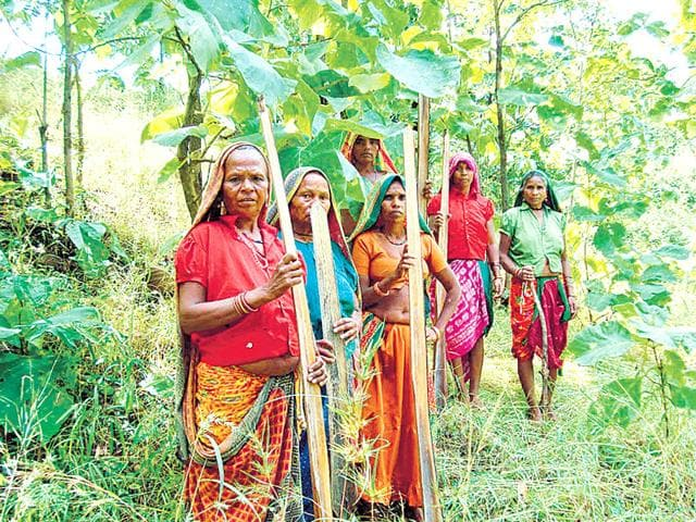 Emphasis-on-protecting-the-rights-of-tribals-comes-in-the-backdrop-of-increasing-perception-of-the-government-being-pro-industry-HT-File-Photo