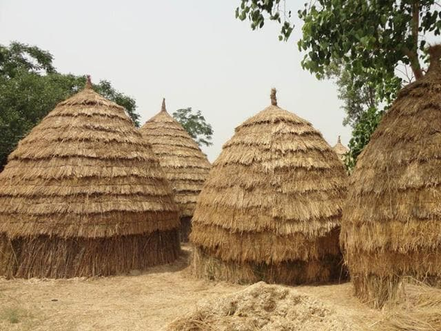 Kupps-traditional-sheds-for-storing-chaff-HT-Photo