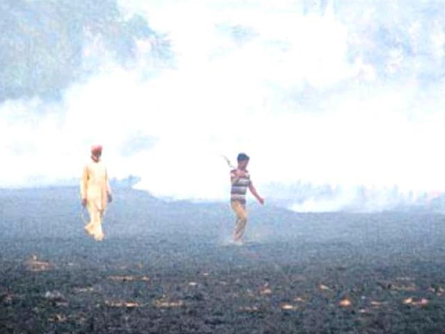 Reports-sat-that-burning-of-crop-stubble-in-Punjab-and-Haryana-is-a-major-cause-of-smog-HT-Photo