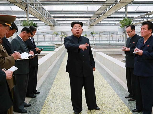 NKorea,politics,Kim
