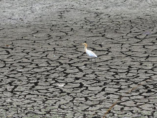 Bonn climate talks