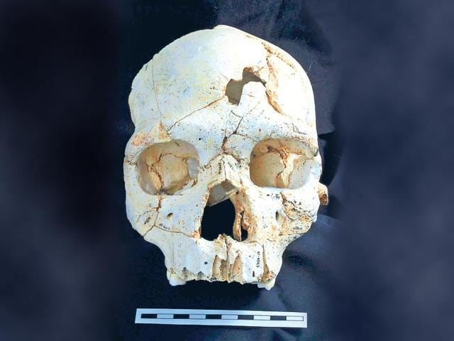 skull,murder,world's first murder