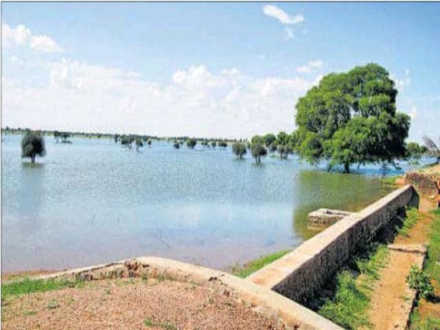 Rainwater-being-harvested-in-masonry-check-dams-in-Govindpura