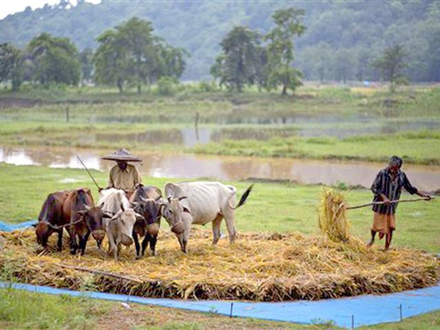 Below normal monsoon likely, Centre asks states to initiate advance remedial steps