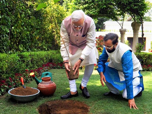 Prime-Minister-Narendra-Modi-planting-a-Kadamb-sapling-Neolamarckia-Cadamba-at-the-Race-Course-Road-lawns-to-mark-the-World-Environment-Day-in-New-Delhi-on-Friday-PTI-photo