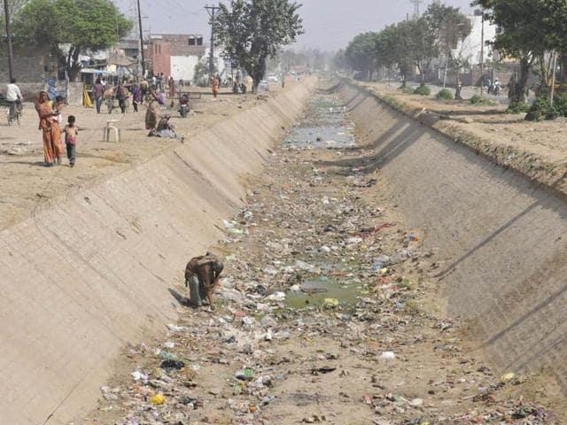 Jalandhar,irrigation department,canal