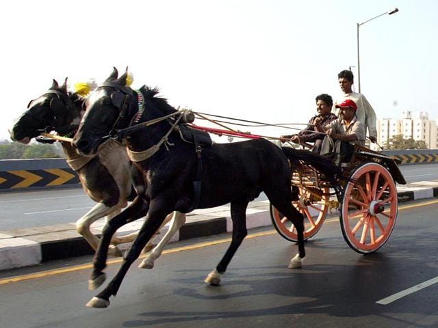 Victoria carriage,Victorias in Mumbai,Victorias banned in Mumbai