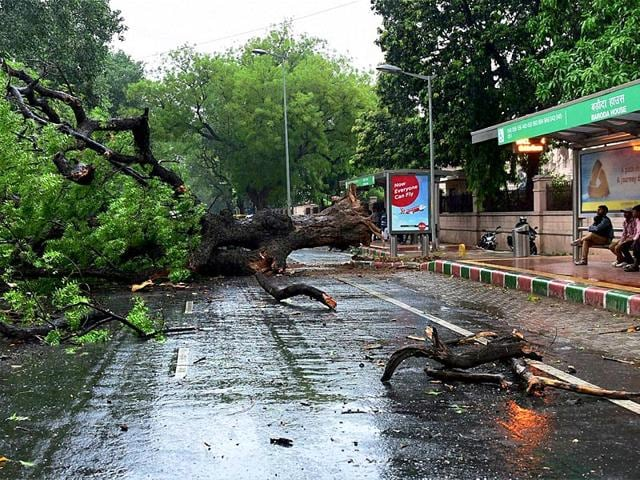 Delhi received a rainfall of 4.8 mm 5.30 p.m. on Saturday : India Meteorological Department. (PTI Photo)