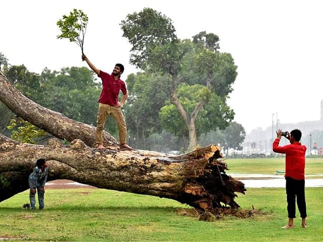 The Met department has said the showers will continue in Delhi for a few more days. (PTI Photo)