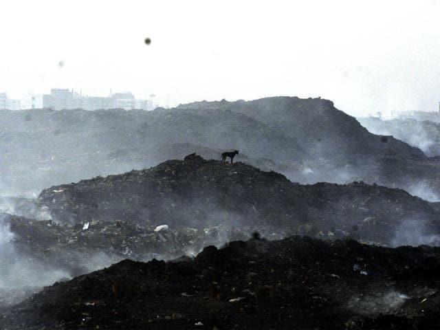 garbage rotting,waste processing,Kishore Kodwani
