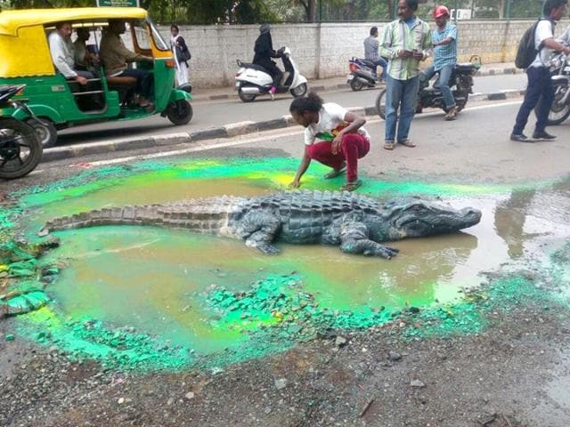 Bengaluru-based-artiste-Baadal-Nanjundaswamy-placed-a-life-sized-fiber-crocodile-in-a-north-Bengaluru-road-to-attract-civil-authorities-attention-Photo-Facebook-page-of-Baadal-Nanjundaswamy