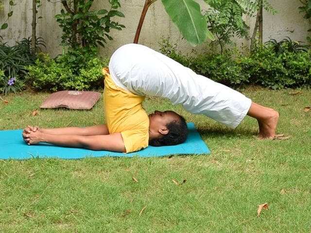 1294e0d1c3 Eight basic Yoga asanas to fix your mind, body and soul | health and ...