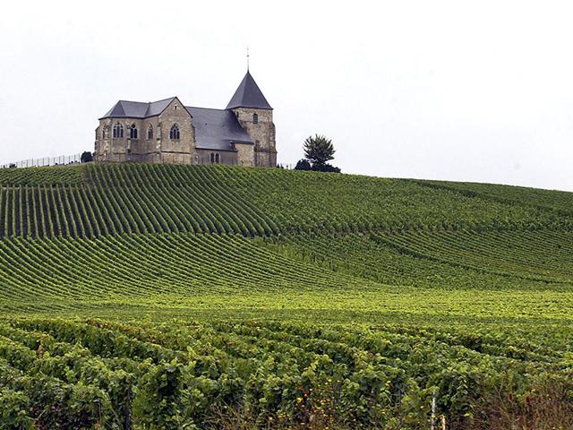 Champagne Vineyards,France,Sparkling wine