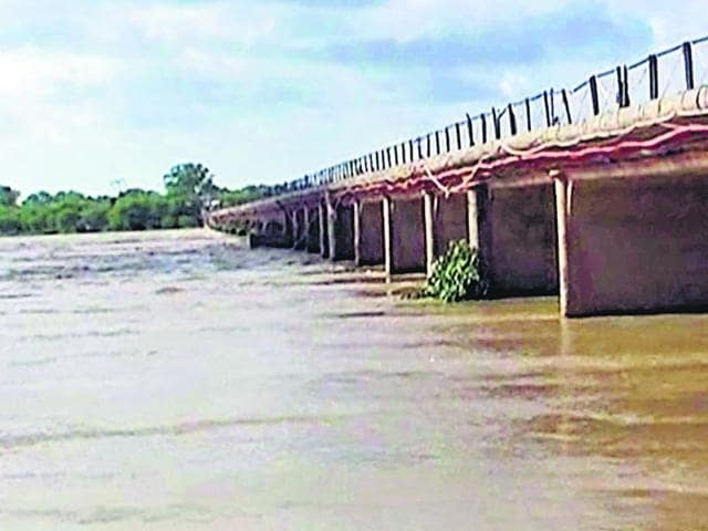 Good-monsoon-and-overflowing-Chambal-ensure-enough-irrigation-water-for-two-years-HT-Photo