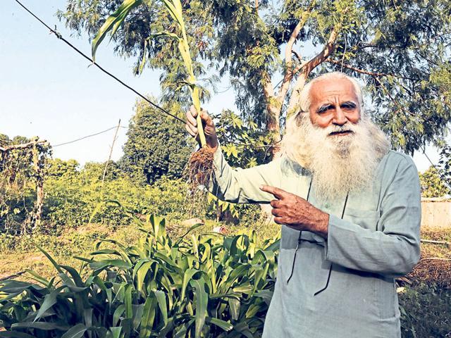Deepak Suchde grows more than 135 crops on the half-acre model farm in Dewas district.
