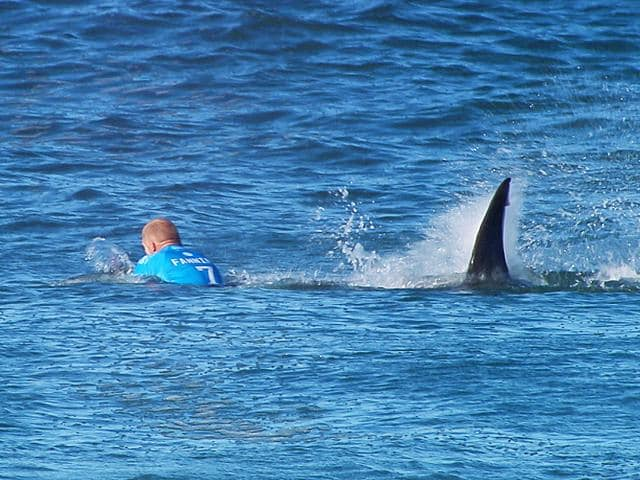 Australian surfer Mick Fanning was attacked by a shark but escaped without injury during the Final of the JBay surf Open on Sunday. (AFP Photo)