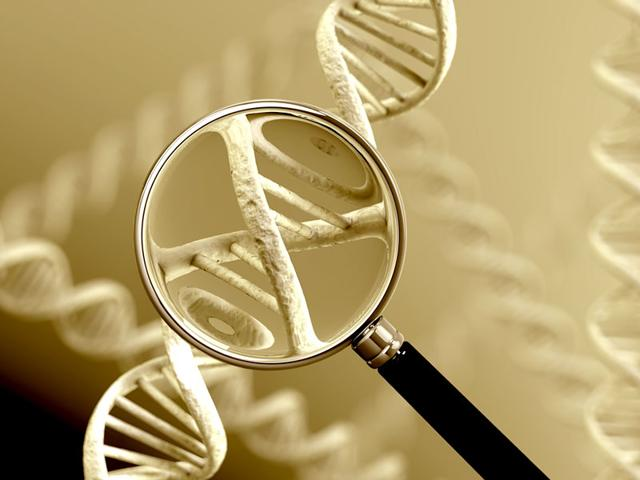 Representative photo of human DNA. The union cabinet is likely consider a bill to create national DNA database of all those in conflict with law including suspects and volunteers. The bill that aims to provide legal backing to use of DNA in criminal and civil suits is slated for introduction in the monsoon session of Parliament. (Photo credit: Shutterstock)